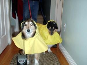Sophie & Bobby in rain coats